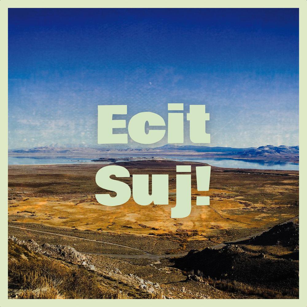 PUZZLES - Ecit Suj! Single